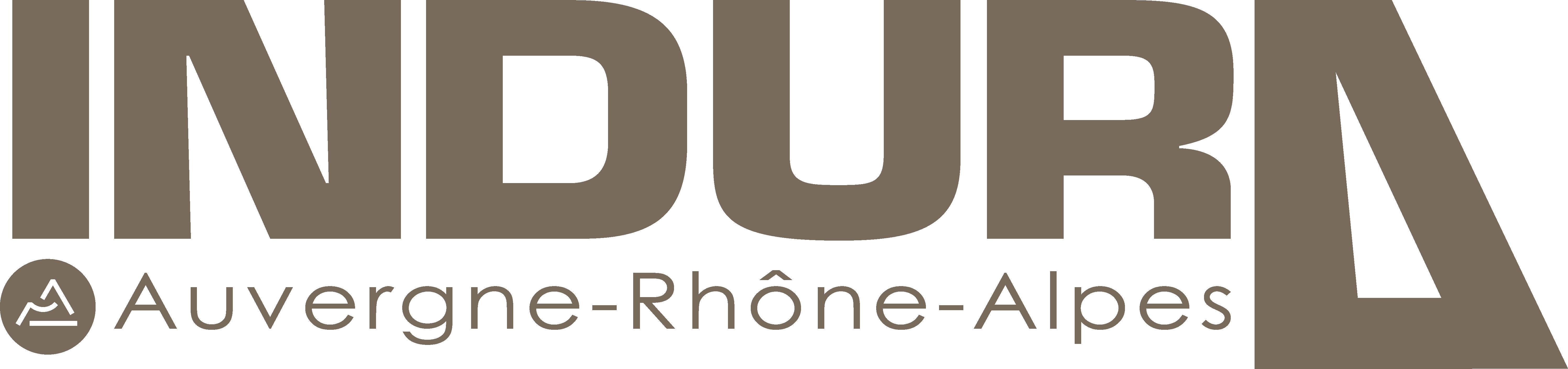 Logo Indura 2020